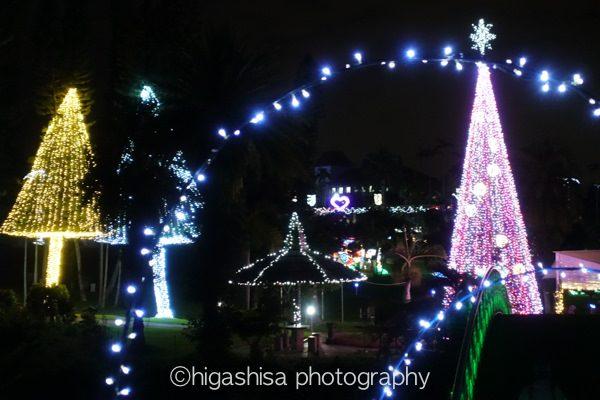 rx100m5東南植物楽園